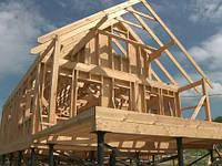 Будівництво каркасних будівель і споруд с, фото 1