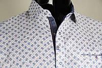 Рубашка мужская ANG 45060/45065 норма и батал