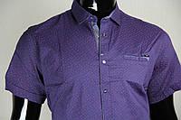Рубашка мужская ANG 45260/45265 норма и батал