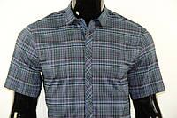 Рубашка мужская 102011