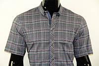 Рубашка мужская 102012