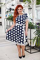 Платье женское горох большие размеры /с41279, фото 1
