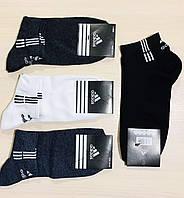 Носки мужские спортивные летние сетка хлопок короткие Adidas Турция размер 41-45 ассорти