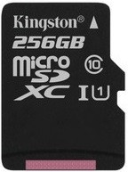 Карта памяти Kingston microSD C10 UHS-I Canvas Select [SDCS/256GBSP]