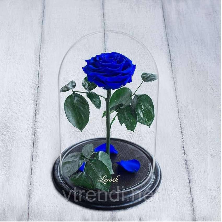Стабилизированная роза в колбе Lerosh - Premium плюс 33 см, Синяя SKL15-138942
