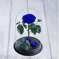 Стабилизированная роза в колбе Lerosh - Premium плюс 33 см, Синяя SKL15-138942, фото 1