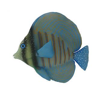 Декор для аквариума флуоресцентная рыбка Zebrasoma desjardinii blue 9,5 см
