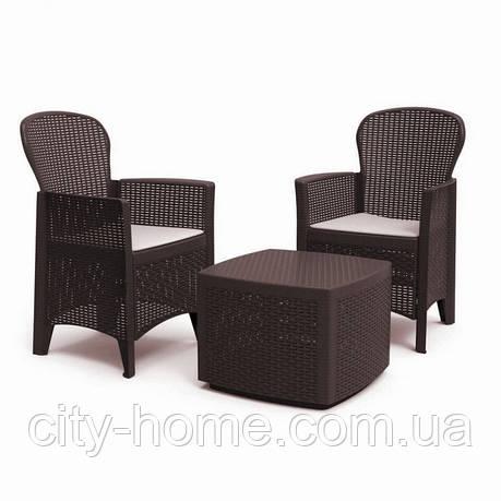 Комплект мебели Tree Set коричневый, фото 2