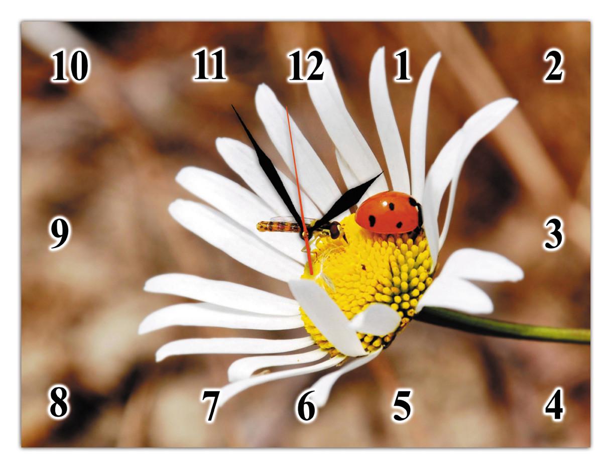 Часы настенные стеклянные Т-Ок 007 SG-30040033
