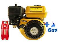 Бензо-газовый двигатель FORTE F200G LPG