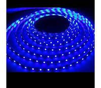 Светодиодная лента Синий SMD3528 60д/м влагозащищенная IP65 1м