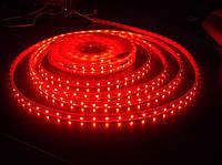 Светодиодная лента Красный SMD3528 60д/м влагозащищенная IP65 1м