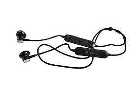 Bluetooth наушники Celebrat A13 Wireless Magnetic Earphones