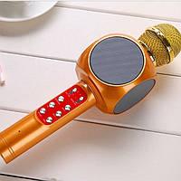 Портативный караоке Микрофон bluetooth Wster ws-1816 золотистый Оригинальный Светодиодный Беспроводной