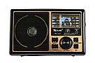 Портативный радиоприемник Golon RX-1417, фото 5