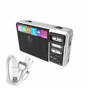 Мультимедийный радиоприемник RX 113 Silver