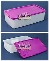"""Ємність 1,3 л для заморожування і зберігання харчова пластикова з кришкою """"Arctic Box"""" Ал-Пластик (Україна), фото 1"""