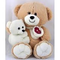Мягкая игрушка Медведь с ребенком 35см №30074 (беж),мягкие медведи,подарки для любимых девушек,отличные