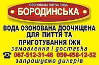"""Доставка питьевой доочищенной воды """"Бородинская"""" по городу"""