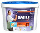 Краска для термоизоляции SMILE SD-54, 1л