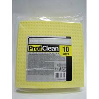 Салфетки влаговпитывающие Professional Cleaning (155х155 мм, 10 штук)