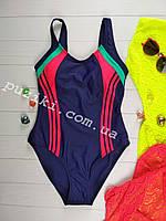 Спортивный подростковый купальник цельный синий с красным 34-42р