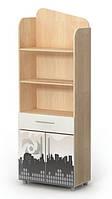 Книжный шкаф М-04-1