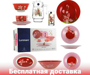 Сервиз столовый красный Luminarc (Люминарк) Red Orchis 46 пр (N4828), фото 2