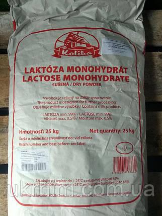 Лактоза пищевая, фото 2