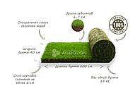 Рулонный газон / Газонная трава в рулонах - 1кв.м.