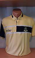 Мужская футболка-поло новинка этого сезона c вышитым гербом на груди и рукаве