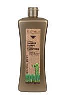Salerm Biokera Argan champu Шампунь с аргановым маслом,300 мл.