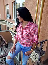 Блуза красная в клетку
