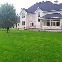 Озеленение участка, территории, сада