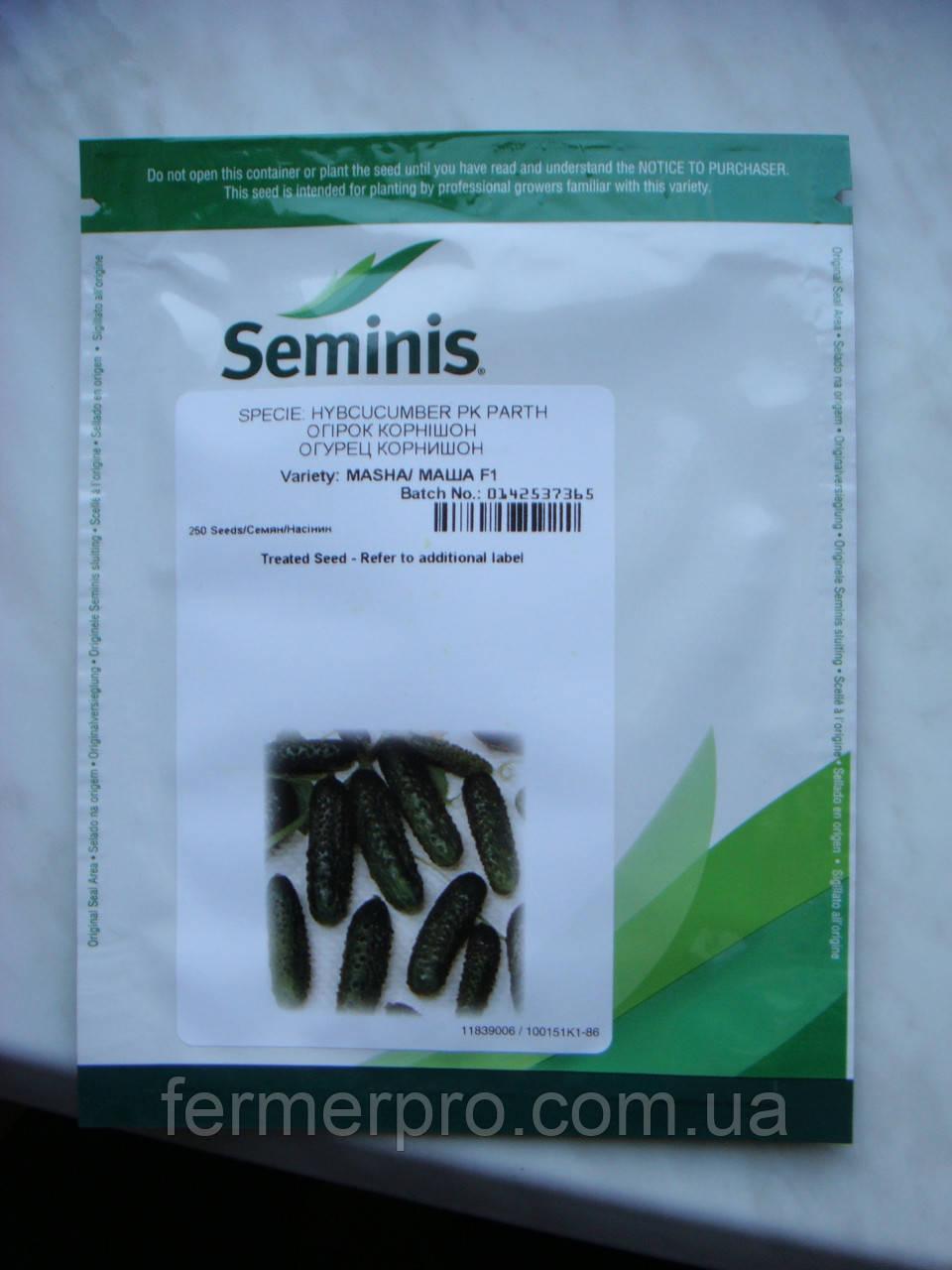 Семена огурца Маша F1 \ Masha F1 1000 семян Seminis
