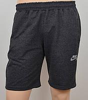 Трикотажные шорты Nike 1901 антрацыт