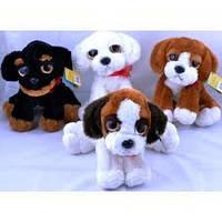 Мягкие игрушки Собаки 25cm №1597-2, мягкие игрушки для детей и взрослых,качественный,праздничные подарки