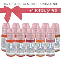 Набор пигментов для татужа Perma Blend 10 + 1 в подарок