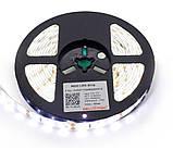 Светодиодная лента SMD 5630 60 LED/5 IP65, фото 2
