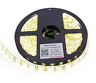 Светодиодная лента SMD 5050 60 LED/5 IP65