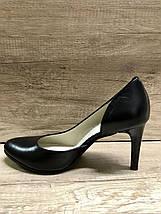 Женские классические туфли Sodis 8003-L03, фото 3