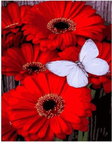 Картина по номерам Бабочка на герберах 40 х 50 см (BK-GX25787)