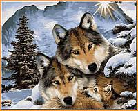 Картина по номерам Семья волков (в раме) 40 х 50 см (NB1023R)