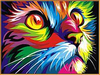 Картина по номерам Радужный кот (в раме) 40 х 50 см (NB532R)