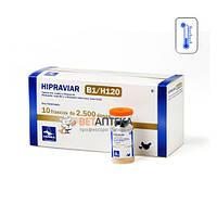 Вакцина Ла-Сота Ньюкасла ХИПРАВИАР-CLON/H120 живая 2500 доз Hipra