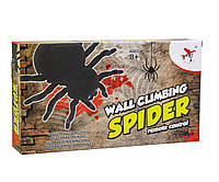 Паук WALL CLIMBING SPIDER, фото 1