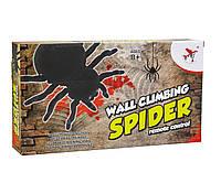 Радиоуправляемый паук, ползающий по стенам WALL CLIMBING SPIDER, фото 1