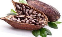 Какао масло, какао терте, кероб