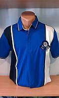 Мужская футболка-поло на кнопке новинка этого сезона с вышитым гербом на груди и рукаве