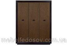 Шкаф для одежды 3Д Корвет Ш-1643 (БМФ) 1660х600х2150мм золотая лоза